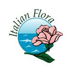 Consegna fiori in tutto il mondo